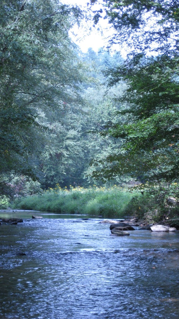 Mulberry Creek is part of a 517-acre parcel that has just been added to the Pisgah National Forest in Caldwell County.