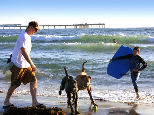 Dog lovers flock to Dog Beach, one of San Diego's 70 free beaches. photo by