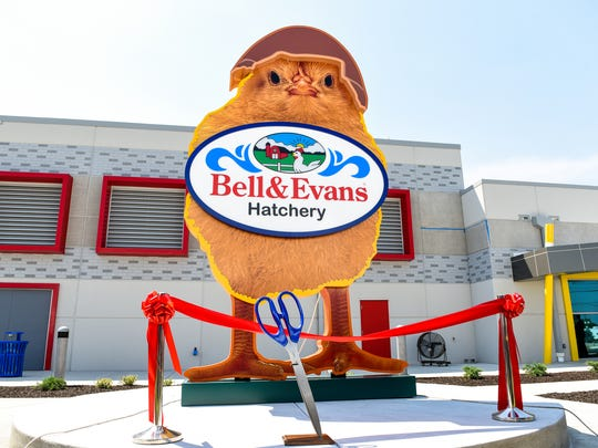 A ribbon cutting ceremony was held on Thursday, June 22, 2017 to open a new $40 million organic chicken hatchery in Fredericksburg, PA, the first of its kind in the United States, according to Bell & Evans.