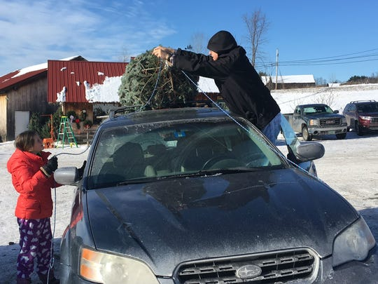 Ivy Schulte, 10, of Monkton, left, helps her grandfather Bill Schulte of Jericho tie a Christmas tree to the top of their car for transport from Whites Tree Farm in Essex on Sunday, Dec. 17, 2017.