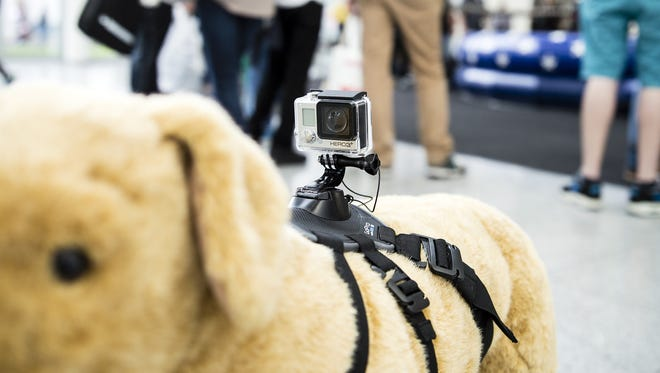 The Fetch is the first GoPro accessory designed specifically for dogs.