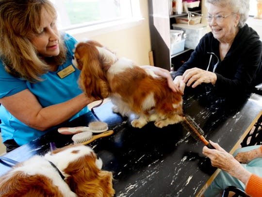 Debbie Cowen brings the dogs to a table where residents