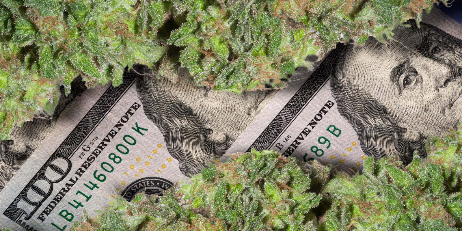 Leon Guerrero among 20 governors pushing Congress to pass marijuana banking bill