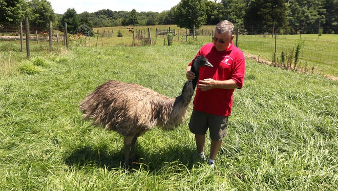 Bob Heybob with Moo, the emu, at his farm in Clarksville. Heybob also has raises wallabies on his farm in Clinton County. In fact, all the wallabies at the Cincinnati Botanical Garden & Zoo were raised on his farm.