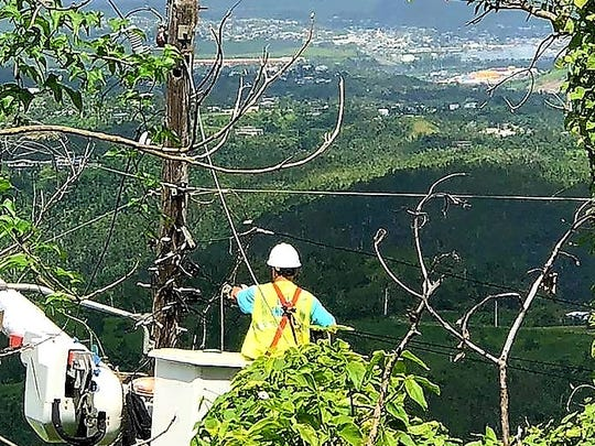 Dave Elgin is pictured repairing a power line in the