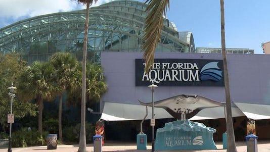 The Florida Aquarium, by HOK Architects (formerly Hellmuth, Obata + Kassabaum), in Tampa.