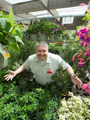 Sutherlands General Manager Gary Mook is pictured in the store's nursery on Thursday March 23, 2017. The nursery offers  many variety of plants including fruit trees, bedding plants, hanging baskets, shade trees, Chef Jeff Vegetables and assorted local shrubbery.