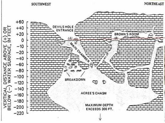 A cutaway map of Devils Hole shows the various rooms of the explored cave areas.