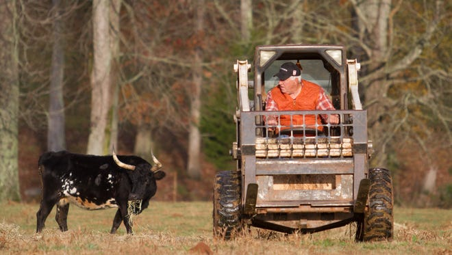 Danny Ford has spent years working on his farm in South Carolina, and sometimes wondering what could have been of his coaching career.