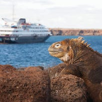 Cruise ship tours: Silversea Cruises' Silver Galapagos