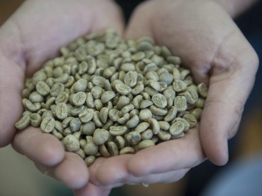 Jamie Blanchard, owner of Royal Mile Coffee, holds green Kenyon coffee beans at his maker space in the SoHa Arts Building in Haddon Township.