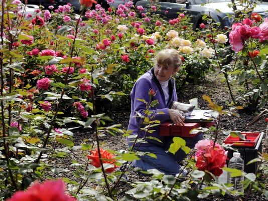 vtd 0926 Master Gardener