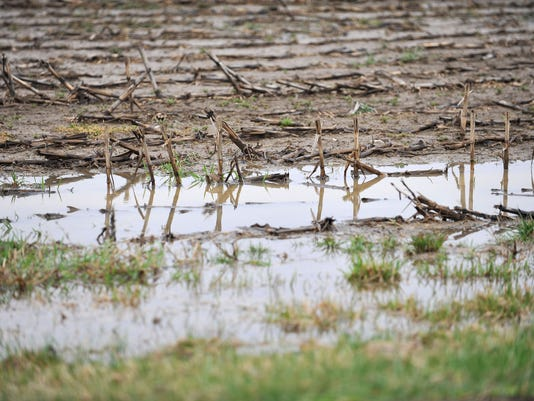 BUC 0408 Ag Beat on wet fields.JPG