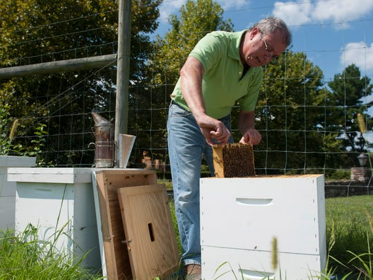 Beekeeper Joel Sternin of Mt. Laurel tends to a hive at Springdale Farm in Cherry Hill. Tuesday, August 18, 2014.