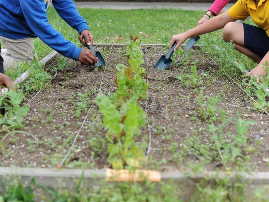 University Baptist Church volunteers help students garden at Thames Elementary School | Gallery