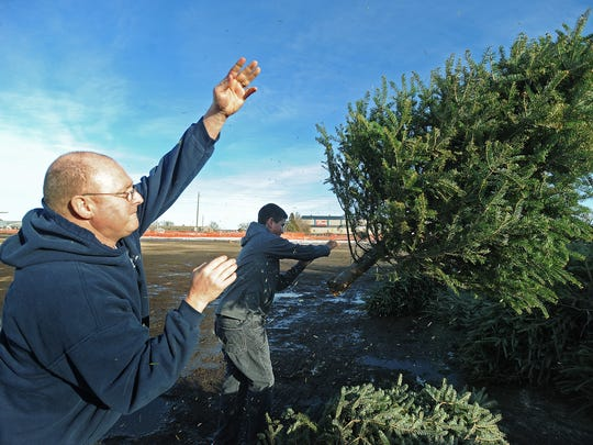 Patrick (left) and Alex Huxford toss their Christmas tree at the Christmas tree drop-off site on North Lyon Boulevard (west of the Sioux Empire Fair) in 2014. The sites open daily at 9 a.m. to 5 p.m. through Jan. 12, 2020.