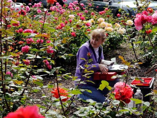 VTD0828 Master Gardener_1.jpg