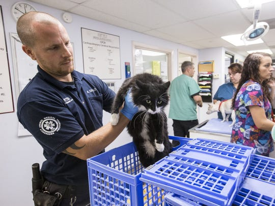 Andy Gallo, an emergency animal medical technician,