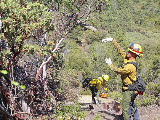 Idyllwild Fire Protection District  clears brush as part of their training for wildfire season.