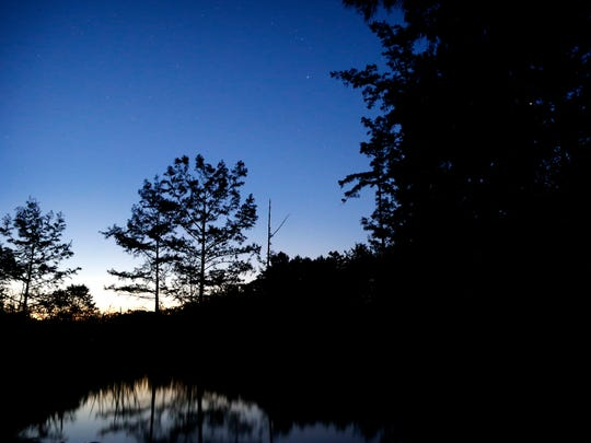 The stars continue to shine in the sky as dawn breaks on the horizon at the Bateman Road Bridge boat ramp along the Wold River near Moscow, Tenn. The boat ramp marks the end of the popular Ghost River section and the beginning of the Lost Swamp trail on the river.