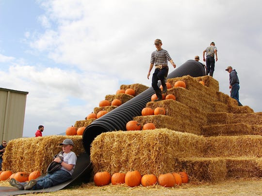 Children slide down a hay slide at the Airlie Hills Harvest Festival in Monmouth Oct. 7, 2017.