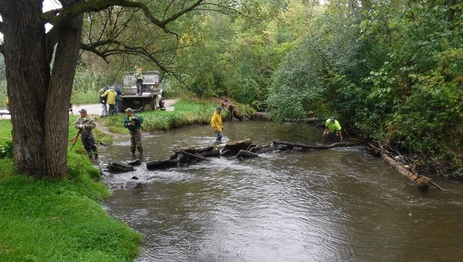 Trout Unlimited members from Southeast Michigan volunteer their time this fall removing barriers from a local trout stream.