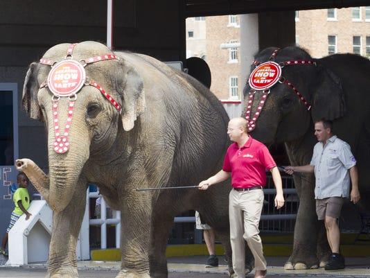 PNI Circus Elephants keep cool