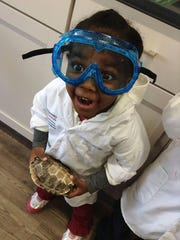 A third grader holds a turtle shell inside the Delmarva