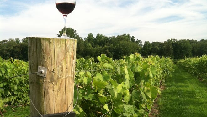 Coda Rossa wines are headed for Moorestown, where Al Dente Italiana will sell them to patrons.