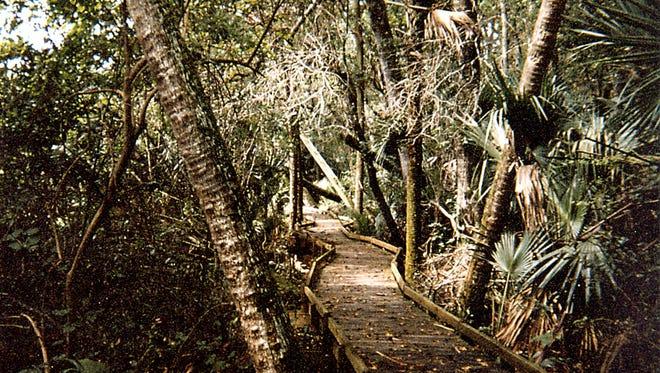Ocala National Forest