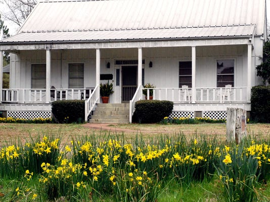 813 - House with jonquils.jpg