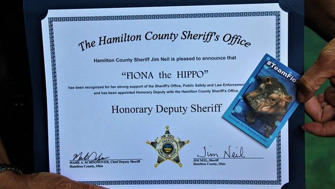 Fiona, the Cincinnati Zoo & Botanical Garden's baby hippo, was named an honorary deputy Wednesday by the Hamilton County Sheriff's Office.