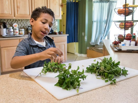 Omar Jacobs, 8, removes mint leaves for the tea that his mother is making at their home in Molino on Sunday, May 6, 2018.