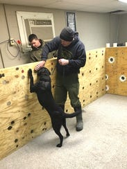 May (with Officer Leibengood) learning how to detect odors. Trained K-9s can detect the smell of gunpowder, which can help lead officers to missing people and people who are hunting illegally.