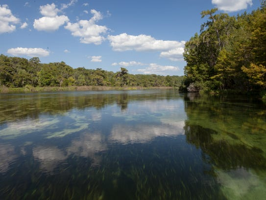 The Wakulla River is a great place to canoe down and