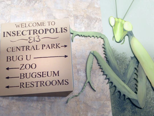 Insectropolis Insect Museum, directions to displays
