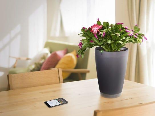 Parrot Pot smart flowerpot