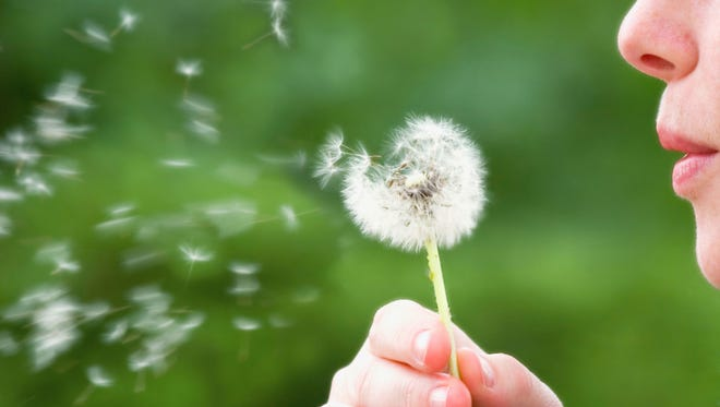 Allergies can put a damper on springtime activities.