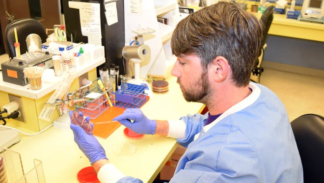 Derek Smith is a senior in the clinical laboratory technician program at LSUA. He is doing a clinical rotation in the microbiology lab at Christus St. Frances Cabrini Hospital.