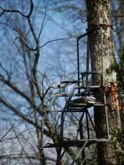 A tree stand on Area 416 sits high in a tree on Area