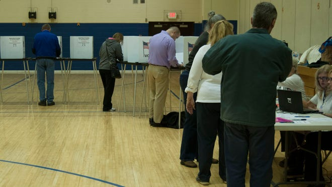 People vote at Precinct 3 Tuesday at Crull Elementary School in Port Huron as other wait to get their ballot.