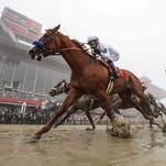 Watch the replay of Justify's win at the 143rd Preakness Stakes