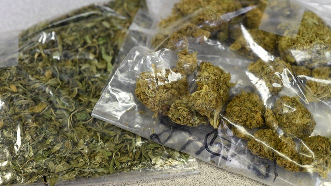 A newer, more potent, marijuana, left, is beginning to show up in the Twin Lakes Area. Flippin Police Chief Dusty Smith said the high-grade pot is coming mostly from Colorado.