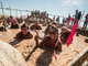 10/24: Rugged Maniac Obstacle Run | There are 25 obstacles