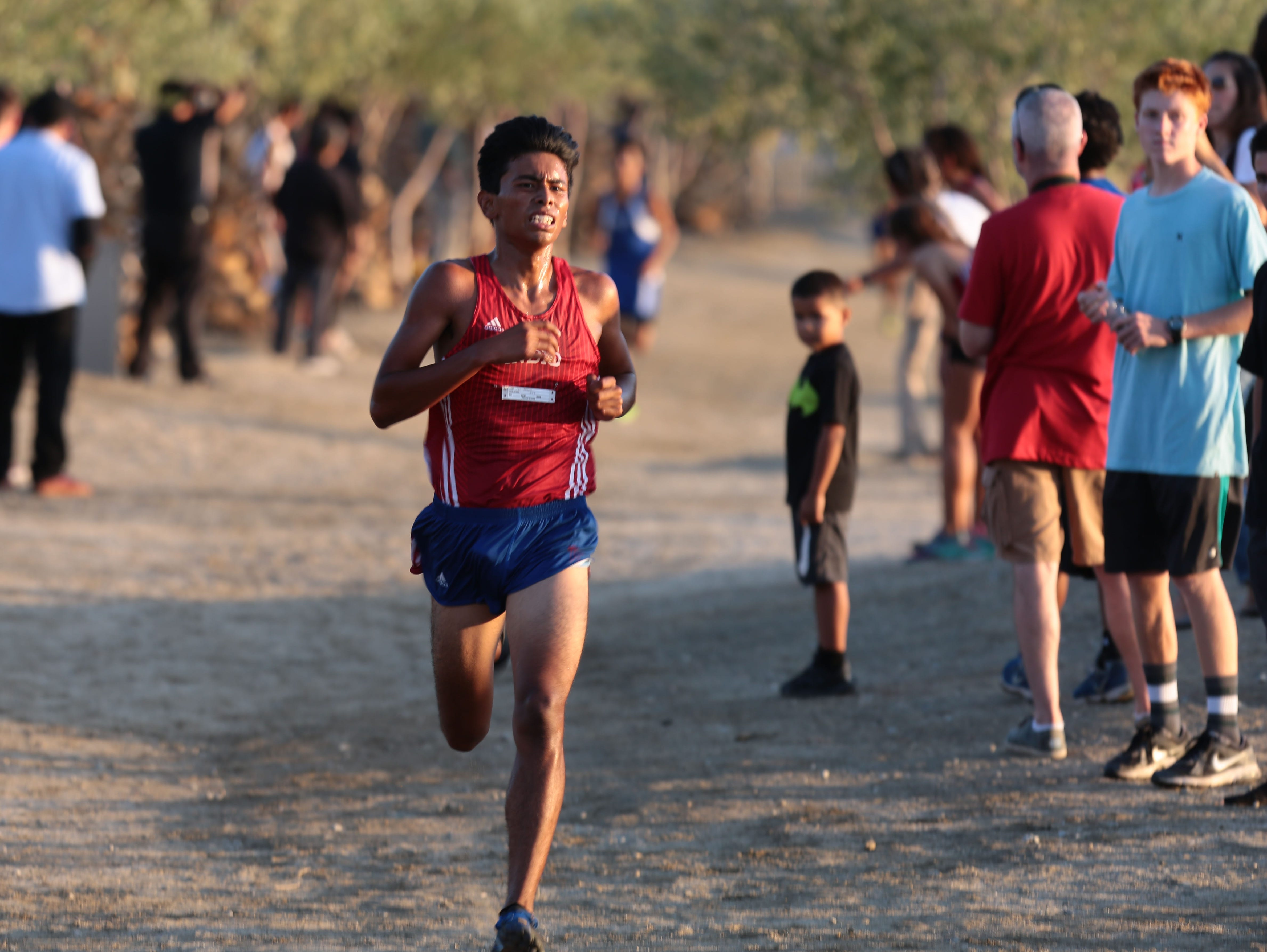 Indio's Luis Berrera is first in the boys' varsity race during the cross country meet at Xavier College Prep in Palm Desert on Wednesday, September 21, 2016.