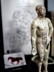 A model showing all of the acupuncture points on the