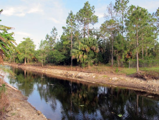 Cypress Canal, about 2 miles south of Randall Boulevard,