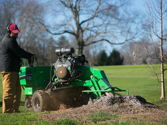 Newark Country Club superintendent, Dave Ellison, chips several tree stumps on the course.