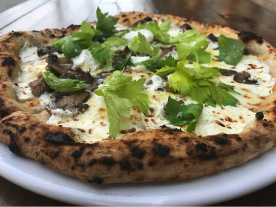 Izzy's cheese pizza with celery leaves