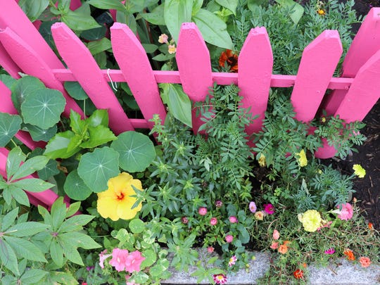 The Nyack Community Garden during Thursday's annual